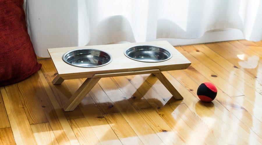 Μπολ σκύλου-γάτας με βάση 4legs